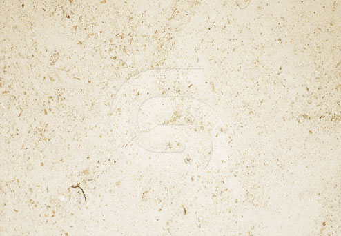 moca-creme-limestone-cc-polished