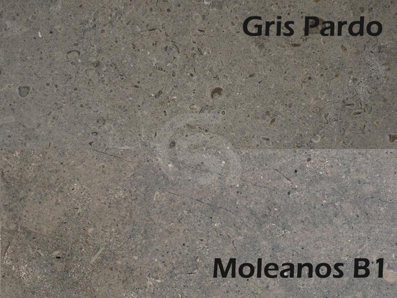 Gris Pardo and Moleanos B1 Limestone