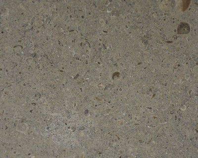 Gris Pardo Limestone