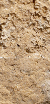 Travertine Noce Cross-Cut - Splitface Featured