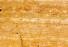 Travertine Yellow Vein-Cut - Polished